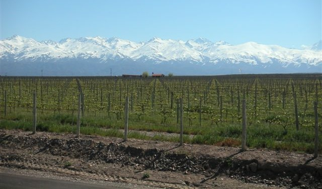 wine region in argentina, argentina wine regions, pictures of mendoza, photos of mendoza