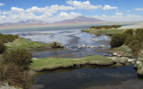 Atacama desert, flamingo reservation, chile, pictures of chile, pictures of atacama desert, atacama desert chile