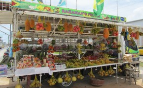 fruit cart, pictures of fruit, fruit in the amazon, amazon jungle fruit, fruits in the amazing, pictures of georgetown, guyana pictures, photos guyana, photos georgetown