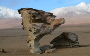 pictures of atacama desert, atacama desert photos, tree rock atacama desert, pictures of bolivia, pictures of chile, desert pictures, cool rock formations, rock formations atacama desert