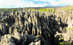 stone forest in madagascar, big tsingy stone forest