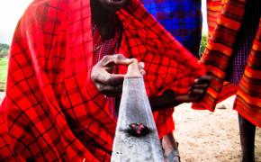 the maasai, maasai in kenya, maasai, maasai rituals