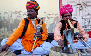 Indian Snake Charmers