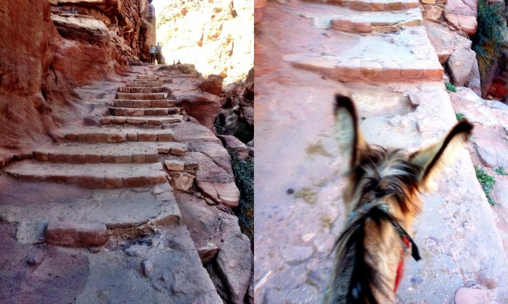 Donkey ride Petra