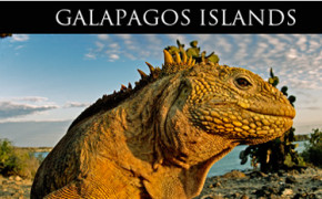 Galapagos Islands with Quasar Expeditions