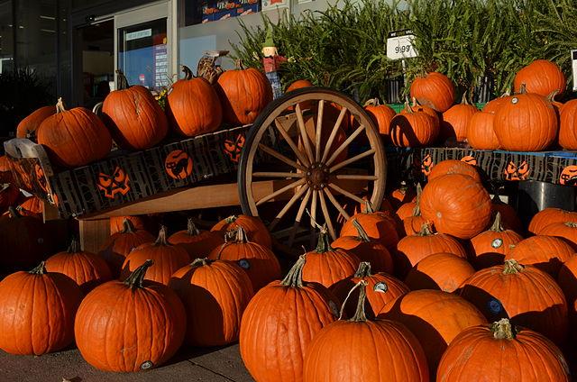 640px-HalloweenPumpkin