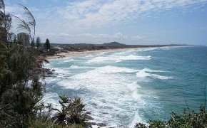 Top Reasons To Visit the Sunshine Coast!