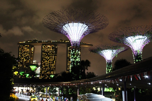 Top tourist attraction in Singapore - gardens by the bay