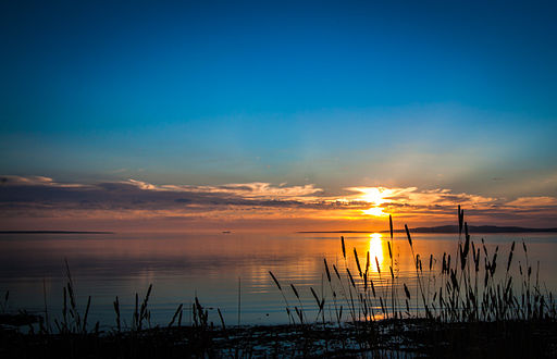 Sunset_Reeds,_North_Shore_Port_Lincoln_-_South_Australia