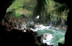 The Sea Lion Caves of Oregon