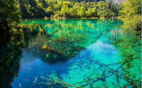 Top 4 Reasons Why You Should Visit Jiuzhaigou in China