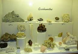 The Museum Of Geology: A Hidden Jewel In Rapid City, South Dakota